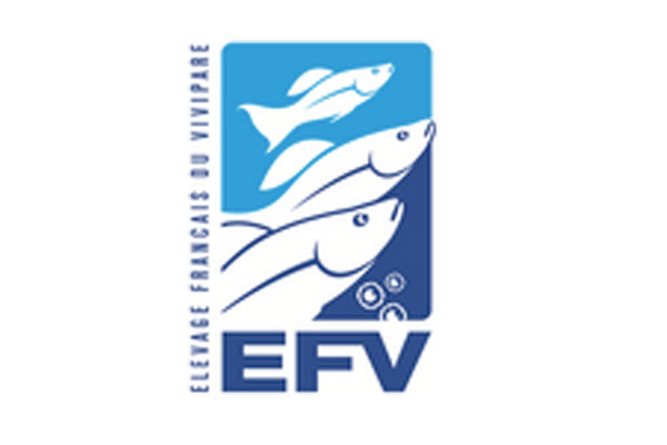 Offra ornamental fish france - Comptoir poisson exotique ...